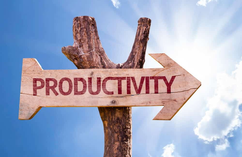 The ideal productive individual. [Productivity 101]