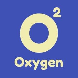 Pillar 1 Oxygen or Search Engine Optimization